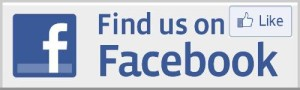 facebook-like-logo small
